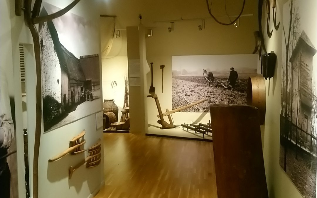 Z wizytą w Muzeum Śląska Opolskiego